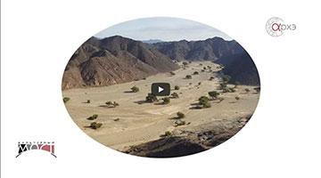 Алексей Крол: Экспедиция в Нубийскую пустыню